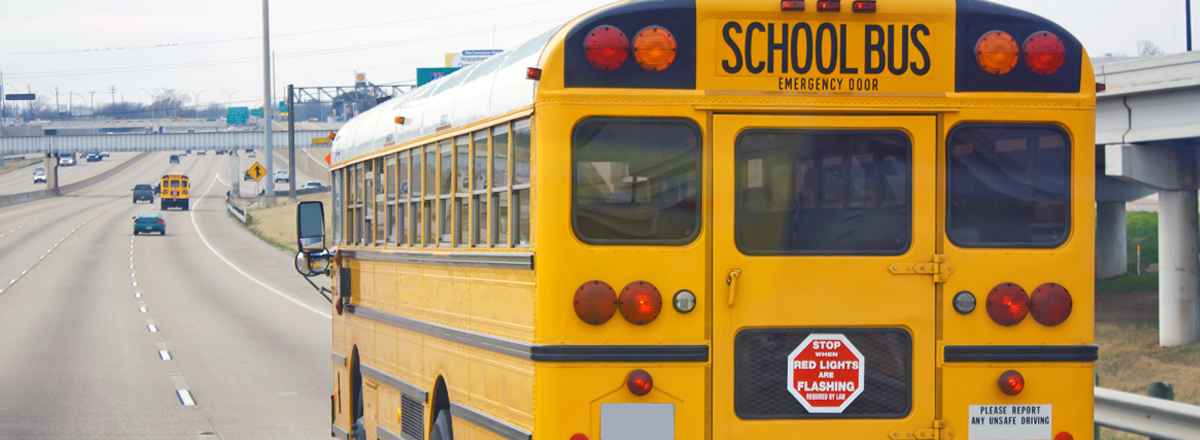 seatbelts on school buses a necessity or A well-done summary of the pros and cons of seatbelts on full-sized school buses can be found here this site is a wealth of info so take your time and look around this site is a wealth of info so take your time and look around.